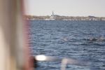 Dolphins swimming in front of my sailboat on Banana River